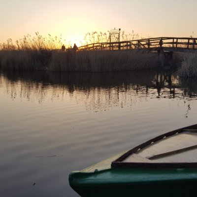 typical wooden boat in the massaciuccoli lake during sunset