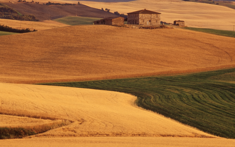 Typical landscape of the countryside in Tuscany