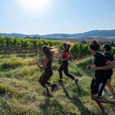 Training in the vineyards of Vino Nobile di Montepulciano