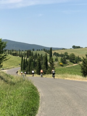 Biking from Castellina in Chianti to Siena