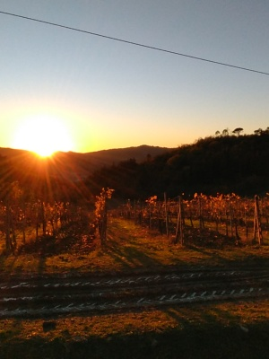 sunset-in-vigna-.jpg