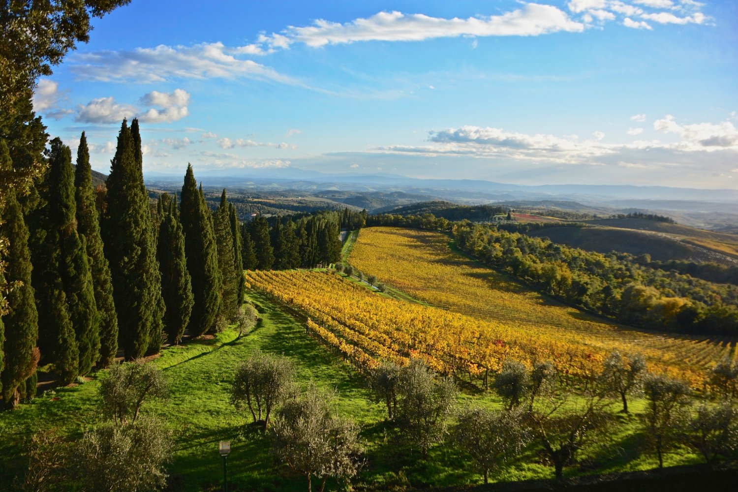 Chianti countryside