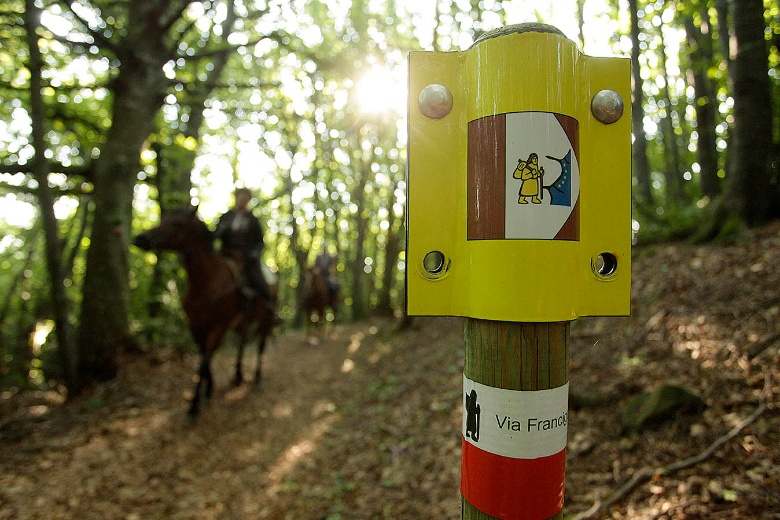 Via Francigena on a horse