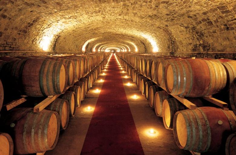 Castello Vicchiomaggio Wine Tour