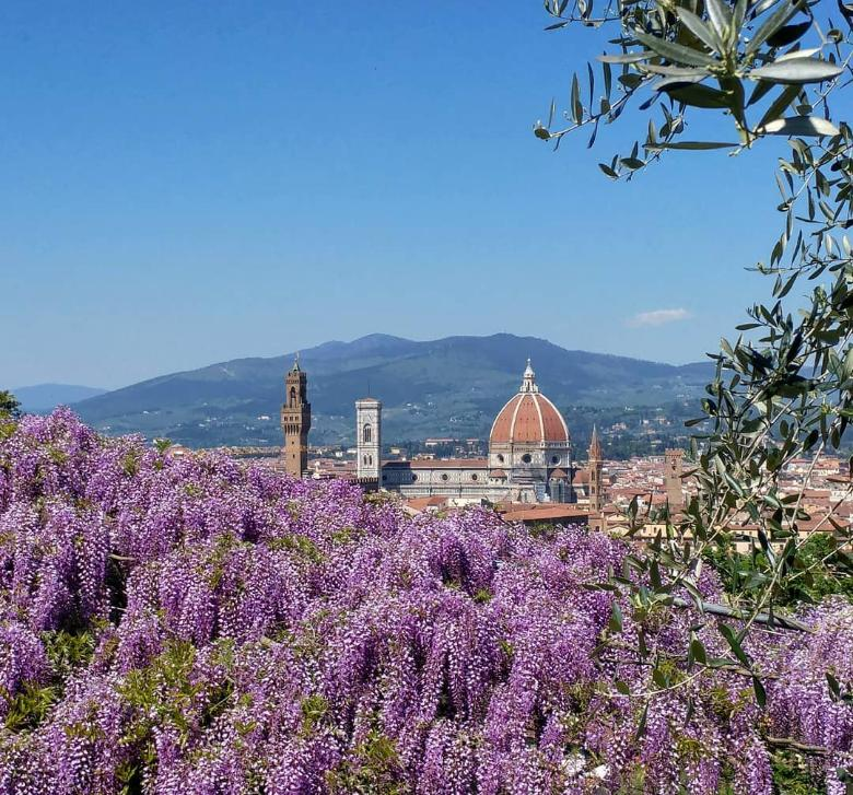 View of the Florence Cathedral from the Bardini Gardens