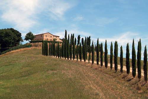 Tuscan houses by Giovanni (Montalcino)
