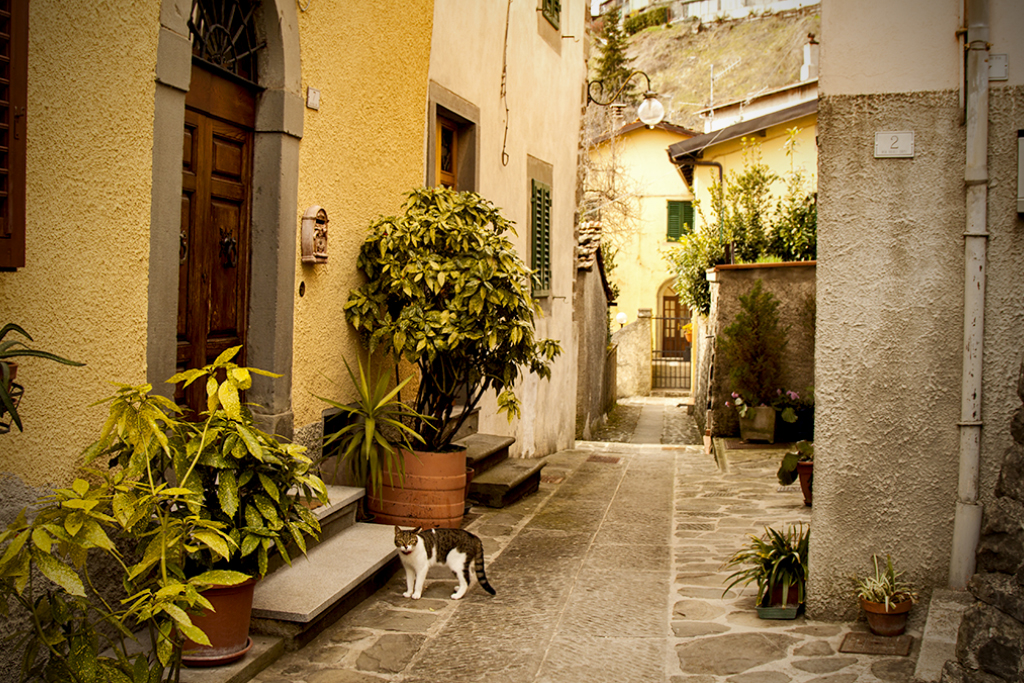 Streets of Cutigliano [Photo Credits: Serena Puosi - Photo Editing: Lara Musa]