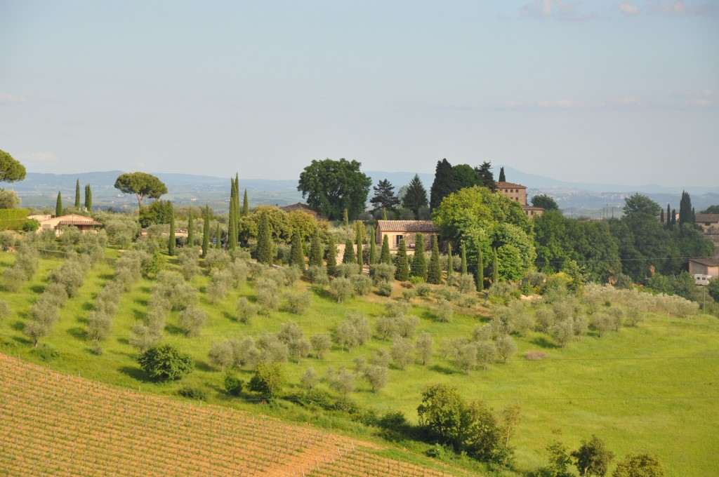 Villa Olivetto - 30 minutes walk of Siena