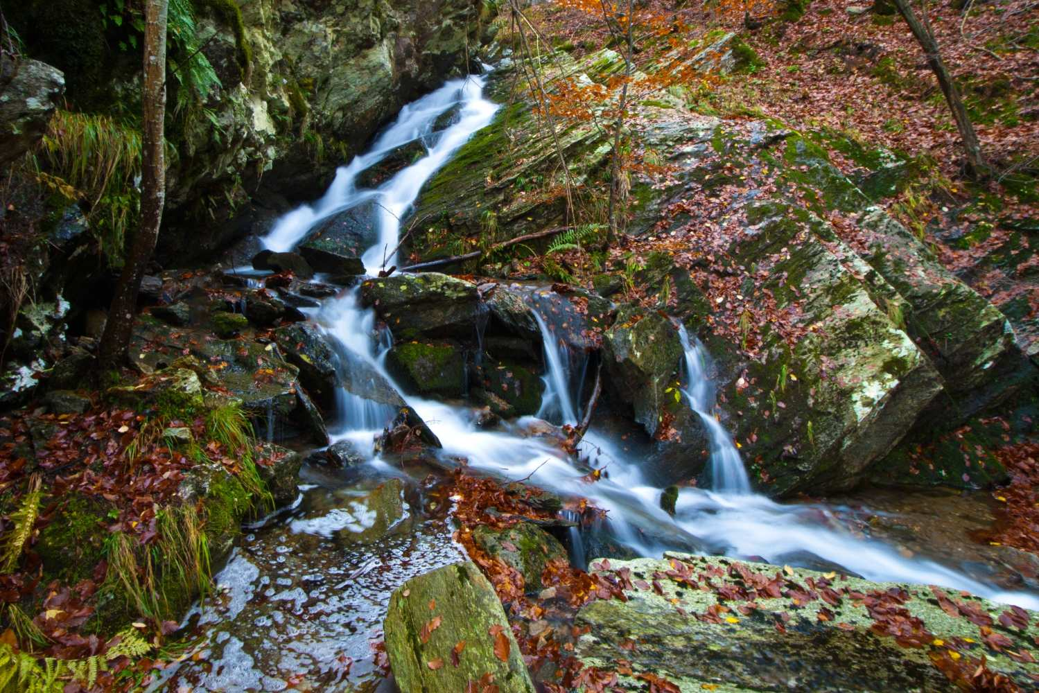 Apuan alps waterfall