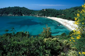 A beach on Elba
