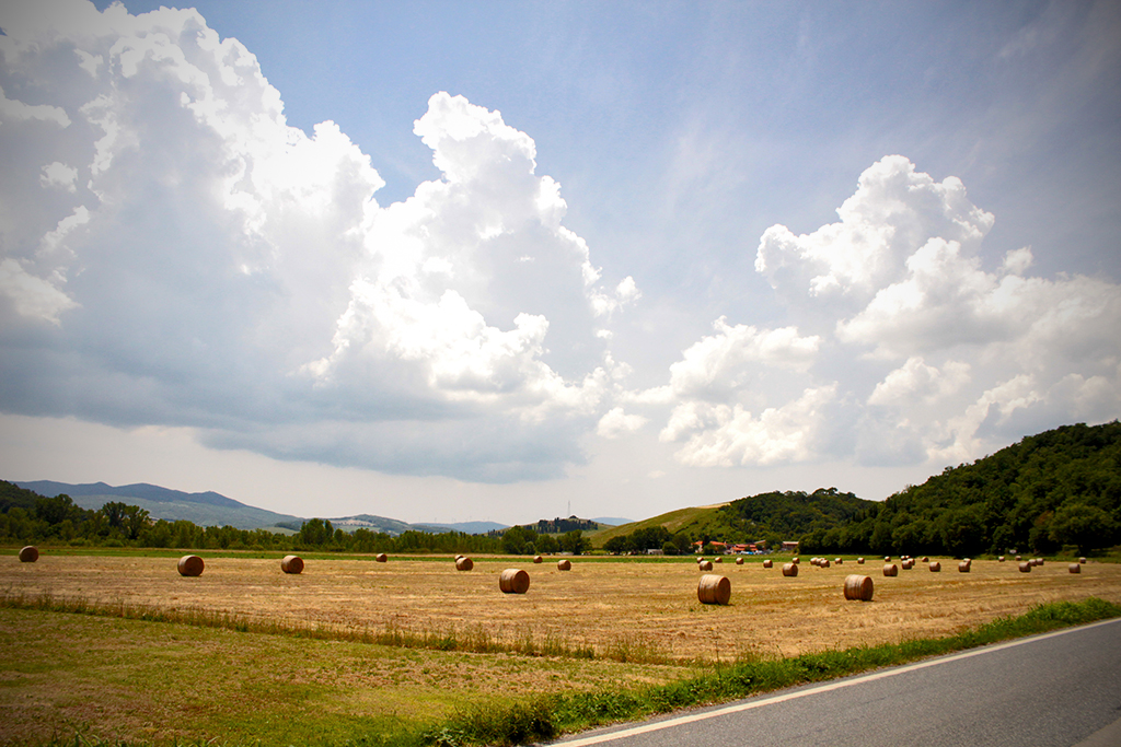Valdera countryside [Photo Credits: Lara Musa Tuscany Social Media Team]