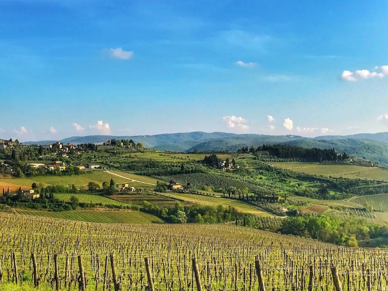 Greve in Chianti panorama