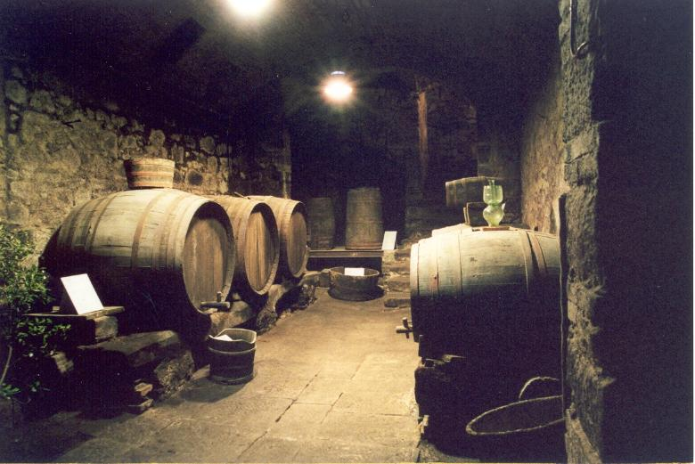 Museum of Wine in Roccastrada