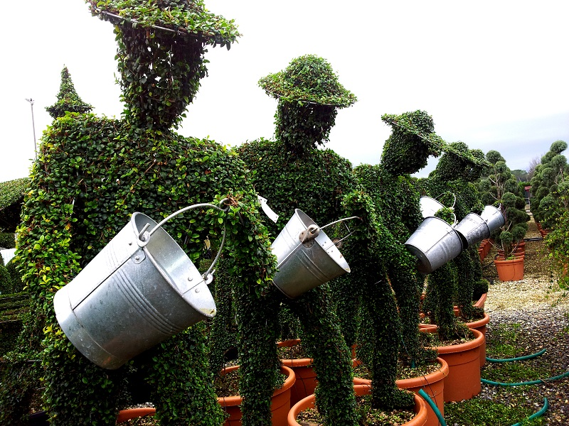 Topiary in Pistoia