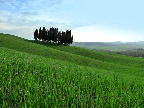 Green hills of Val d'Orcia valley [Photo Credits: lo.tangelini http://ow.ly/hfE1z]