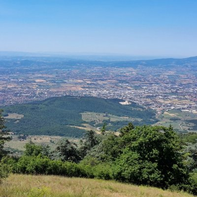 The view from Monte Morello