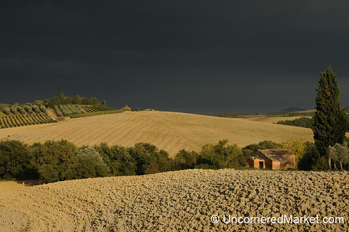 Ploughed fields and changing weather make dramatic photos
