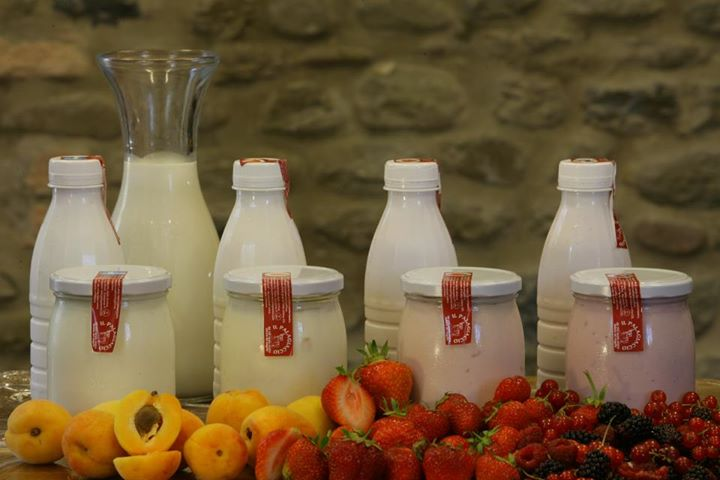 Yogurt dell'azienda agricola Palagiaccio [Photo Credits: http://on.fb.me/120lDio]