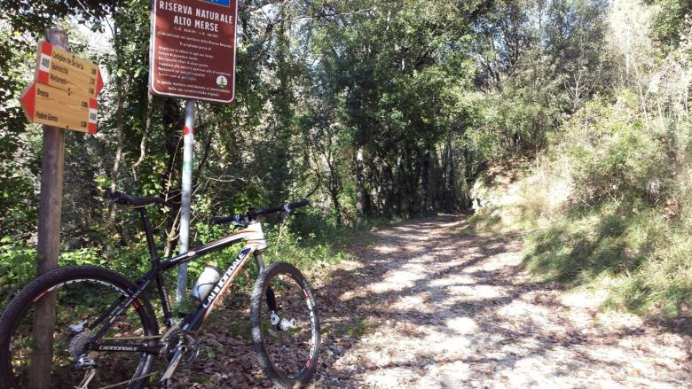 Biking through the Upper Merse Nature Reserve