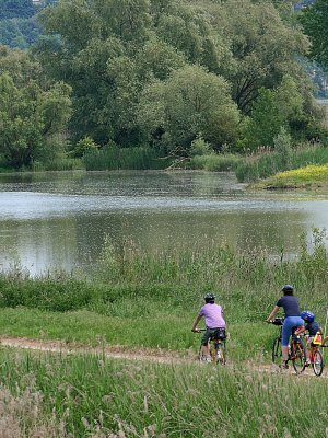 Biking along the Bonifica Trail
