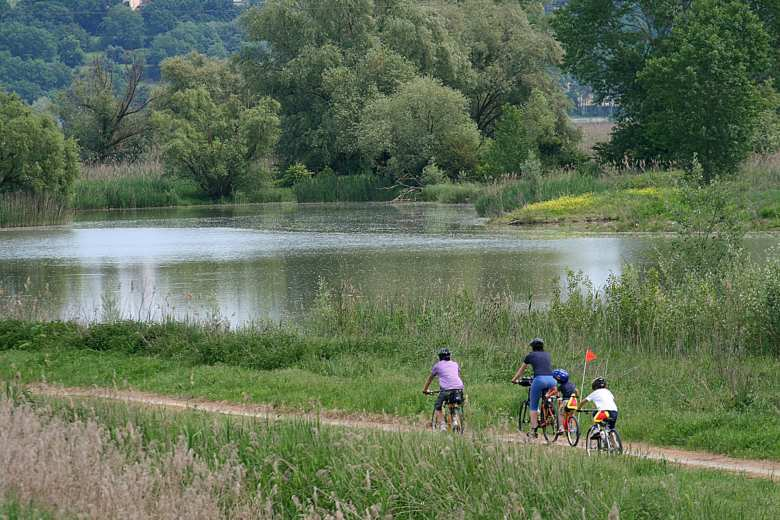 Cycling along the Sentiero della Bonifica