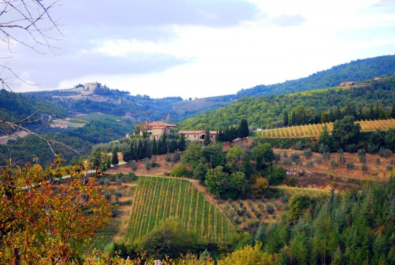 A glimpse of the countryside around Gaiole in Chianti