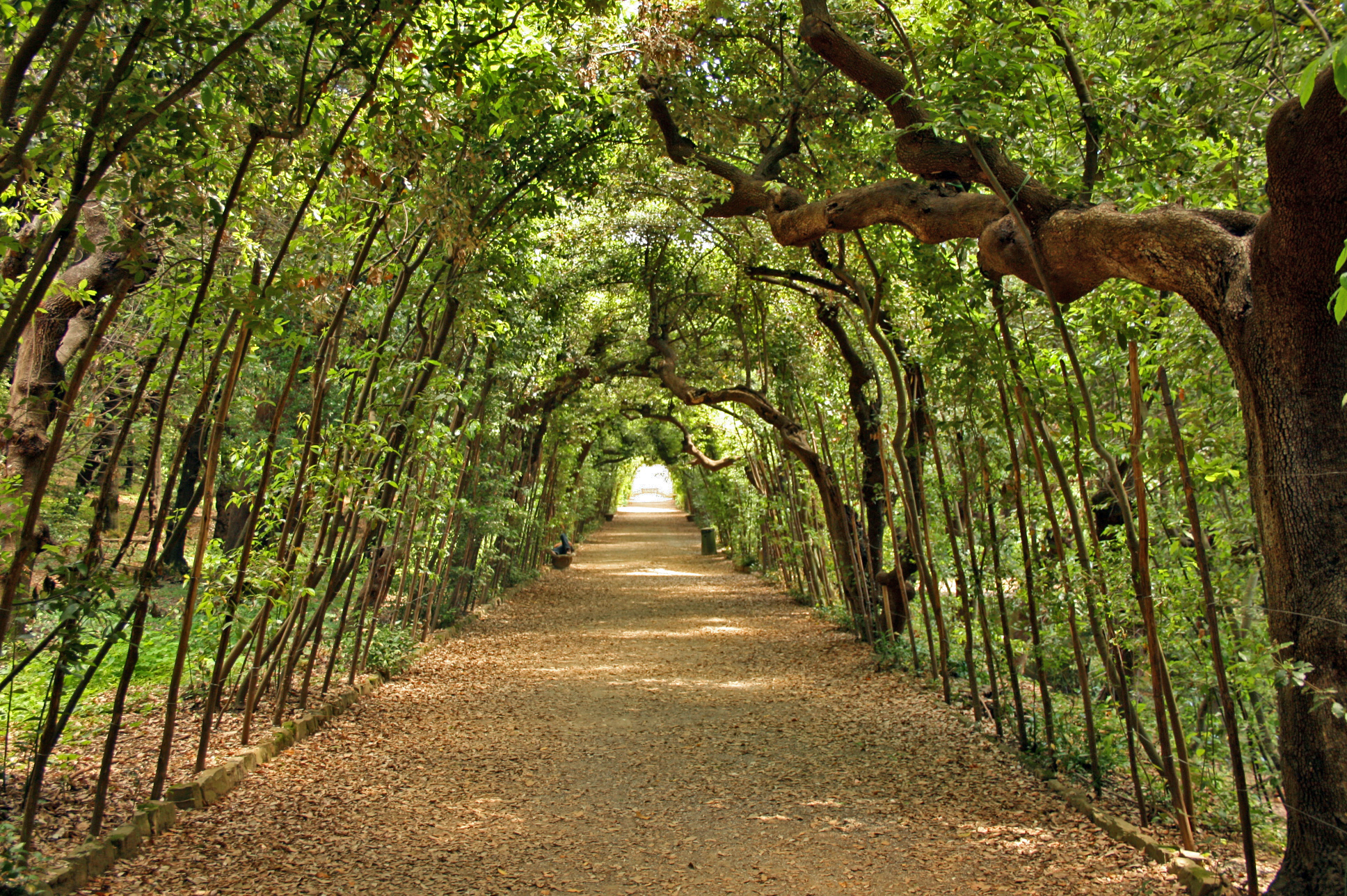 Segreti da scoprire nel giardino di boboli visit tuscany