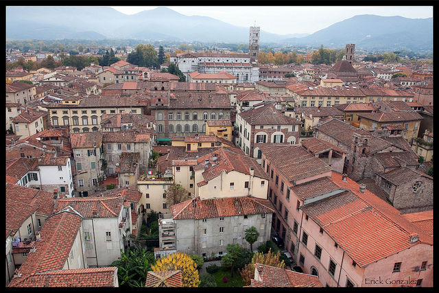 Roofs of Lucca - [Photo credits: Erick Gonzalez]