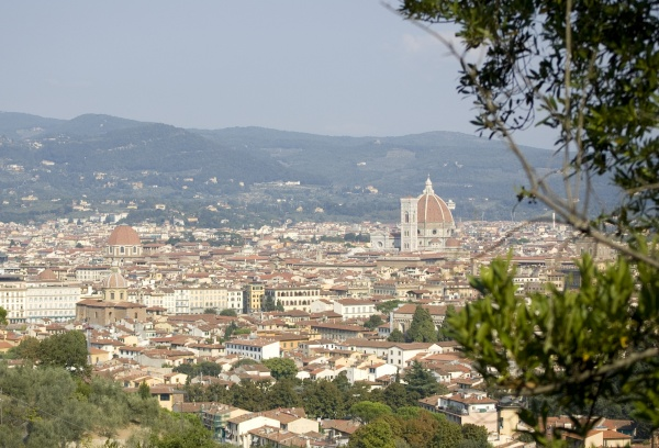 Florence from the Bellosguardo hill