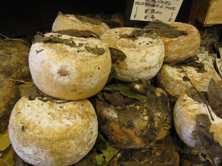 Pecorino aged with walnut leaves in terracotta jars