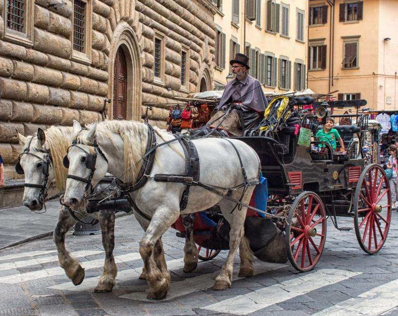 Horse-drawn carriage ride in Florence