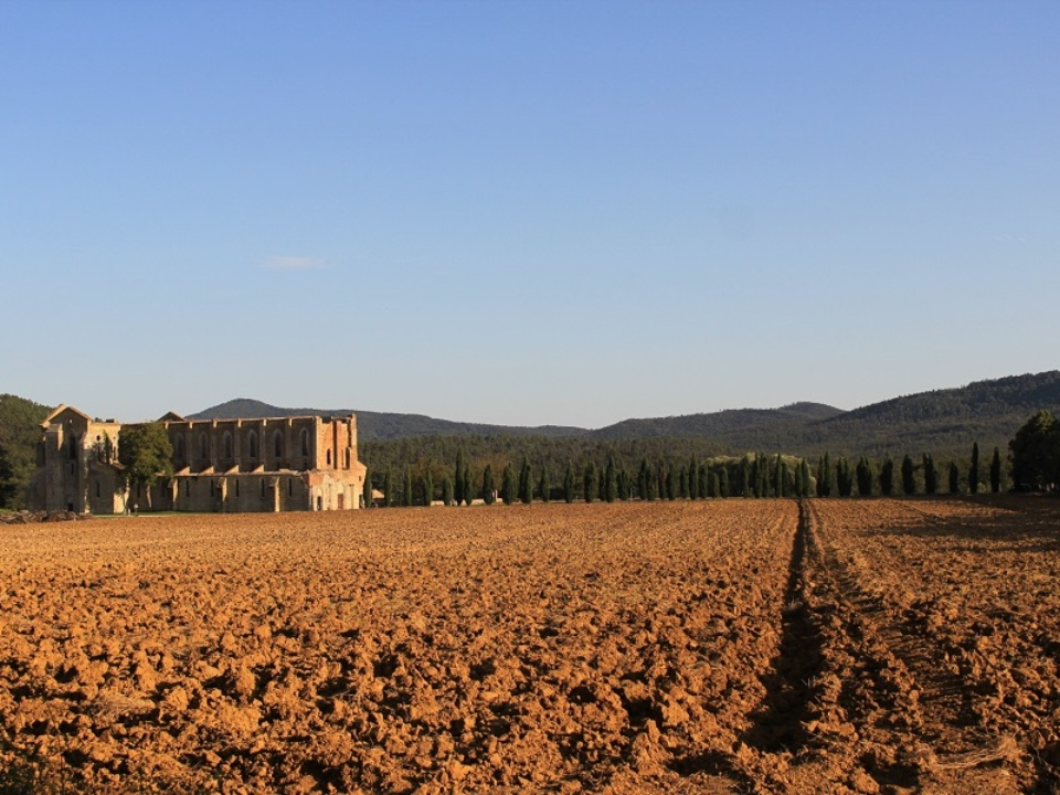 fields san galgano