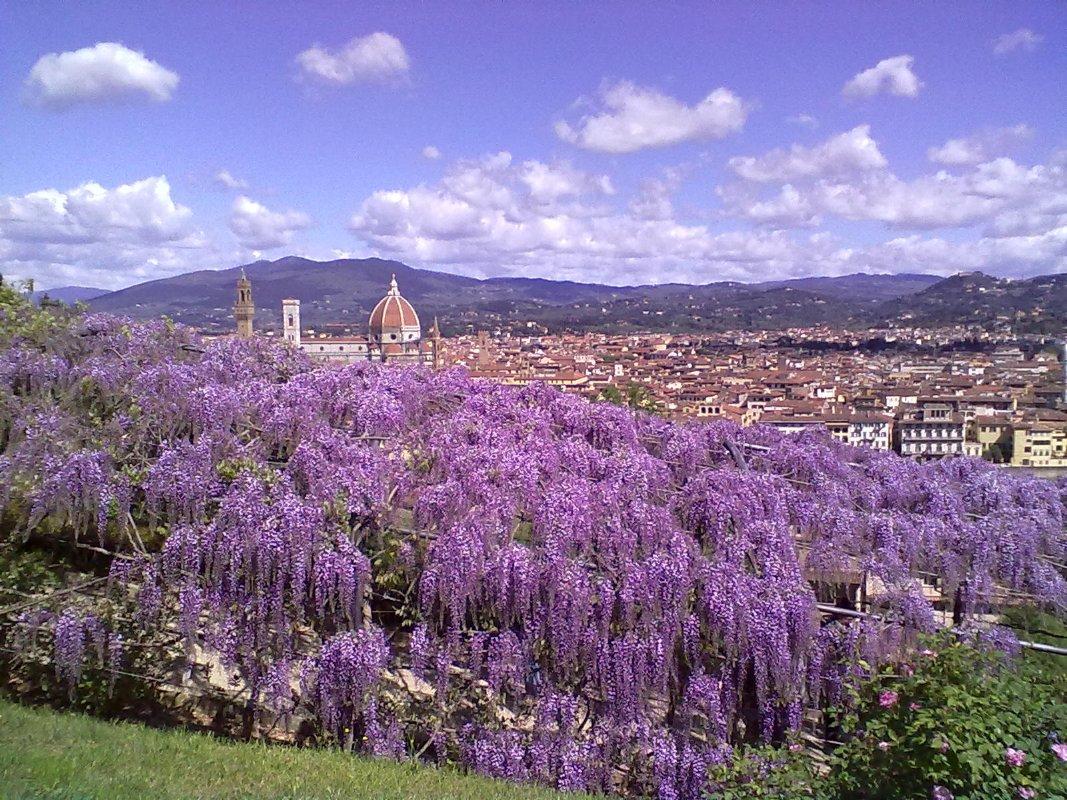 Bardini villa and garden visit tuscany for Giardino firenze