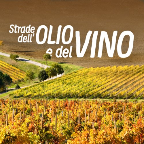 Cover Strade del Vino e dell'Olio