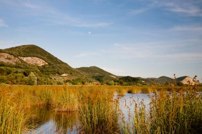 Lake Massaciuccoli