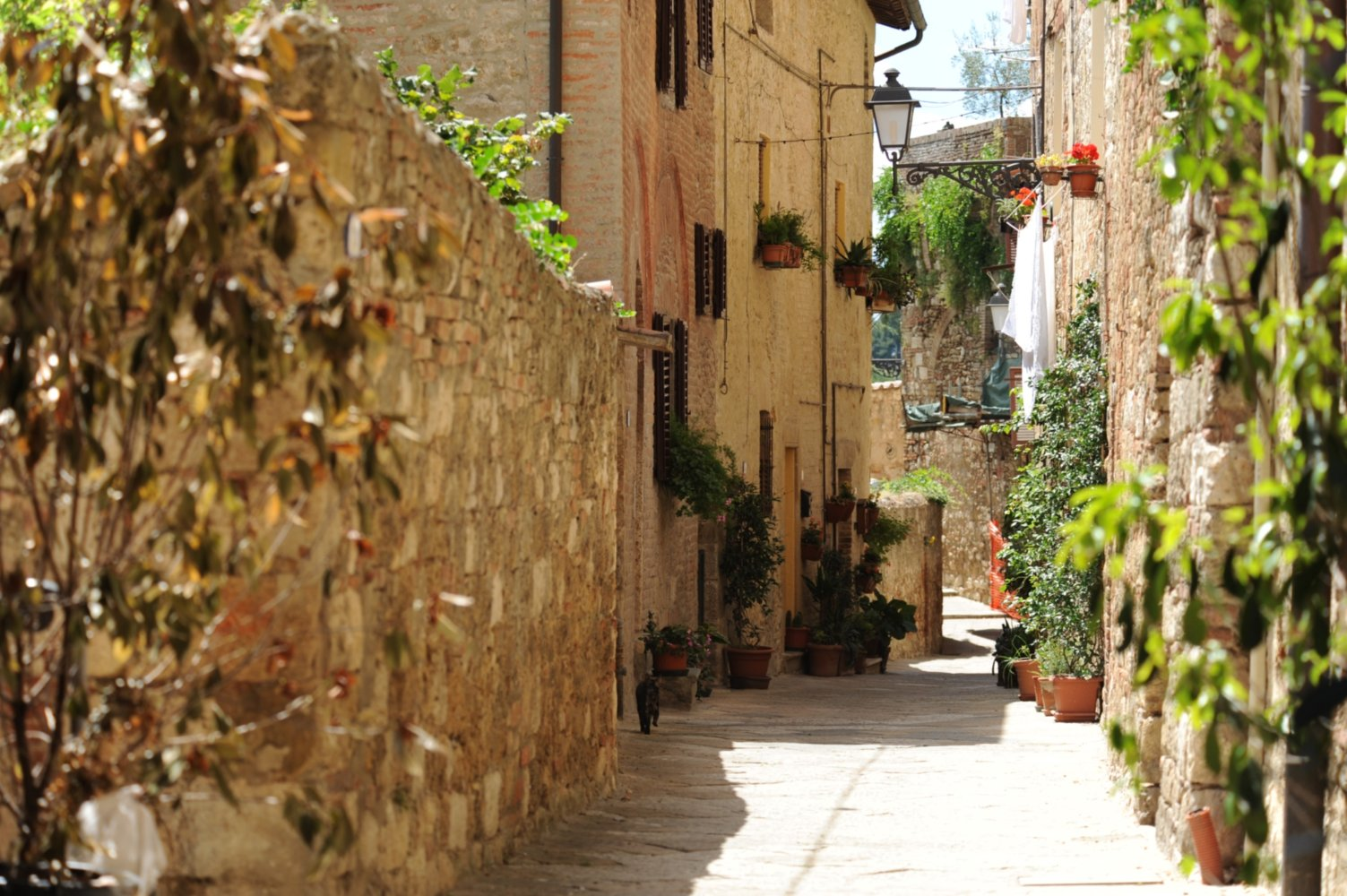 5 motivi per visitare colle di val d 39 elsa visit tuscany for Gr2 arredamenti colle val d elsa