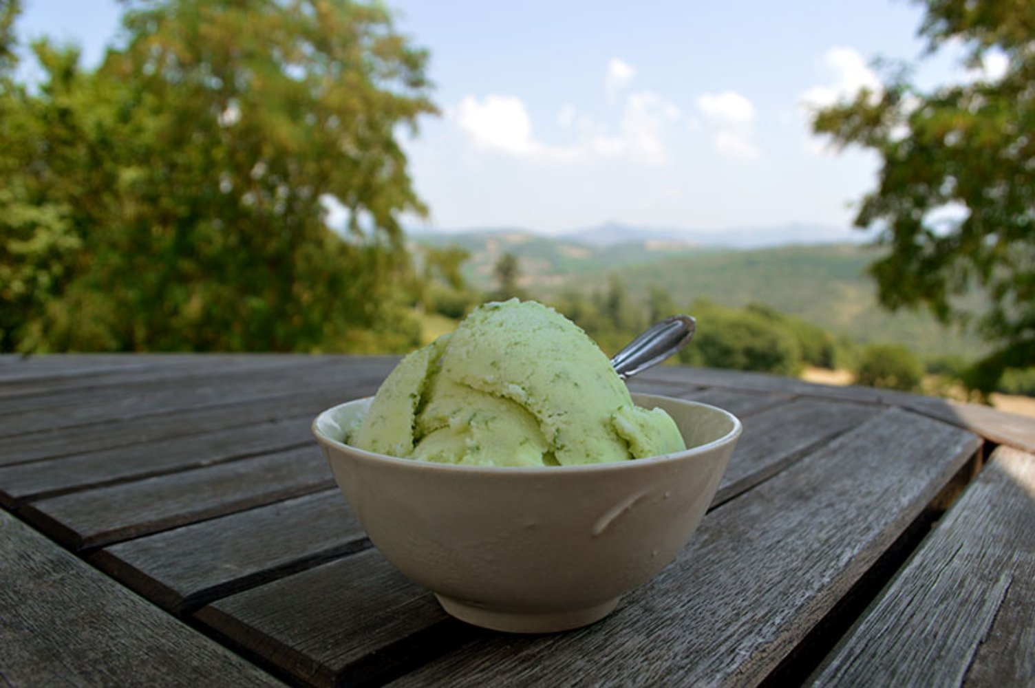 Lemon and Basil gelato