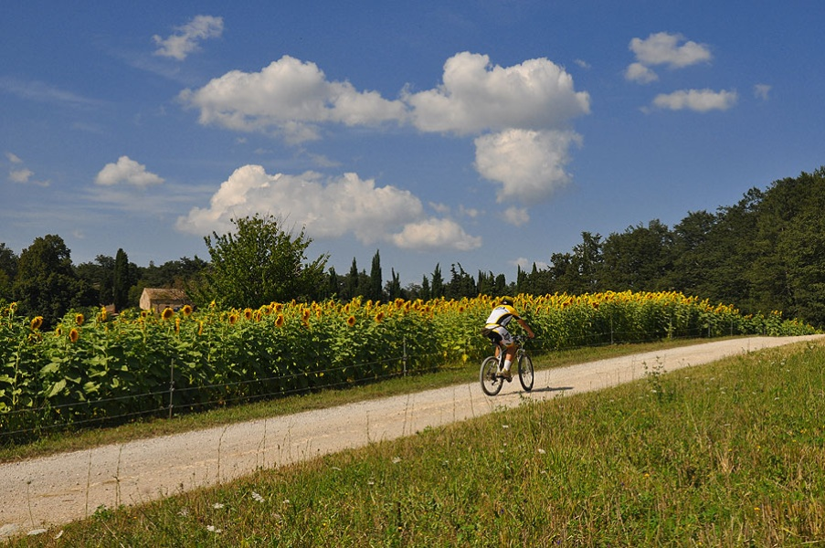 MOntaione by bike