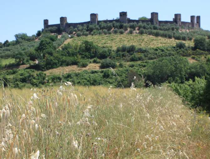 Monteriggioni seen from the via Francigena