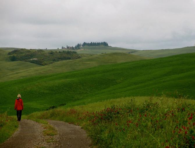 On foot along the Via Francigena