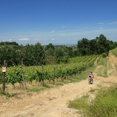 Percorso in mountain bike a Montaione