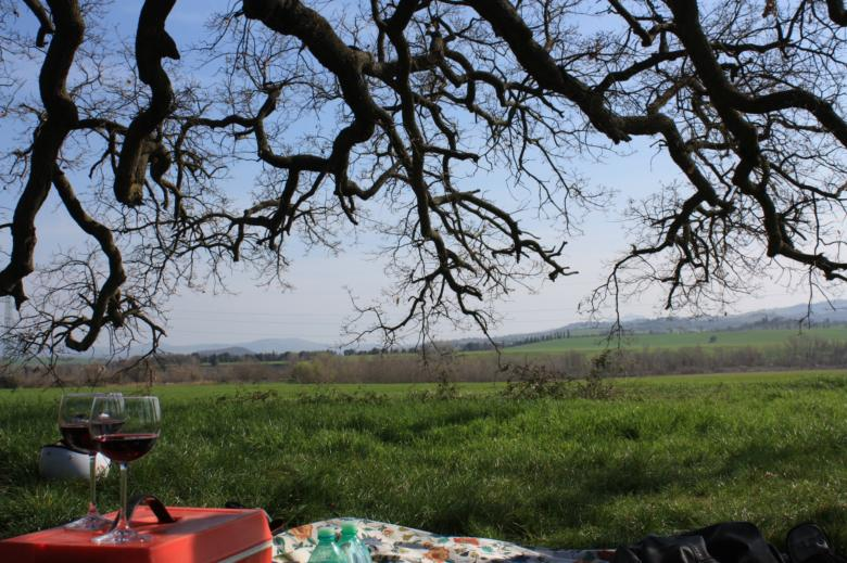 Picnic at the Quercia delle Checche