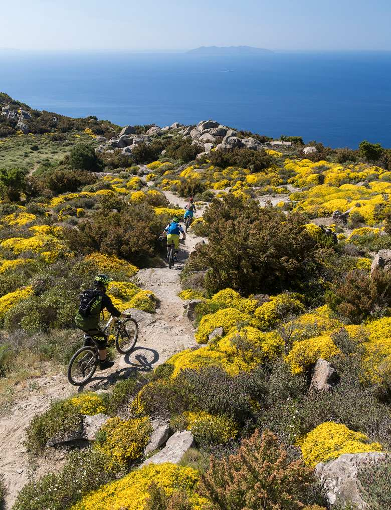 Cycling on Elba