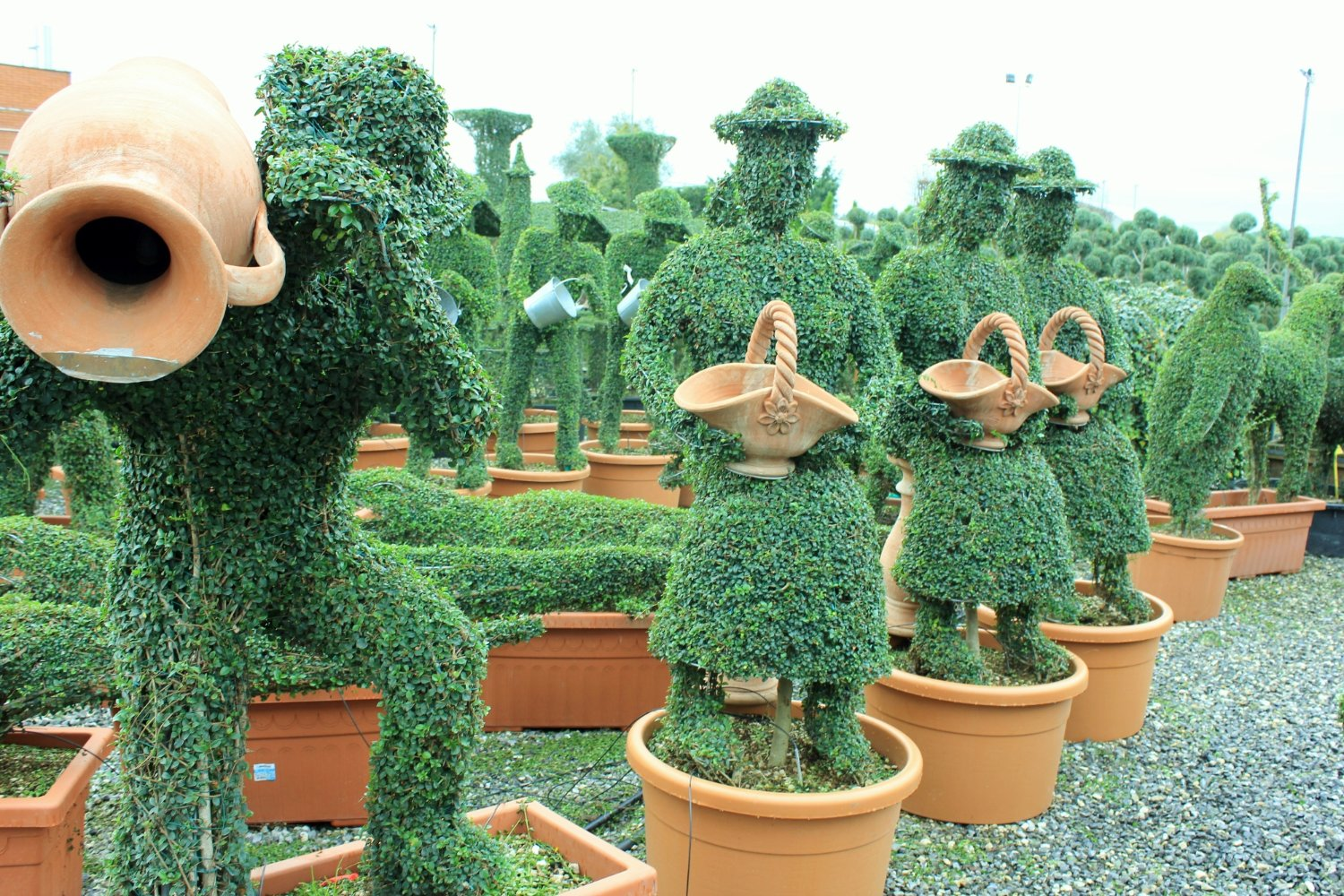 Topiary Crafts in Pistoia