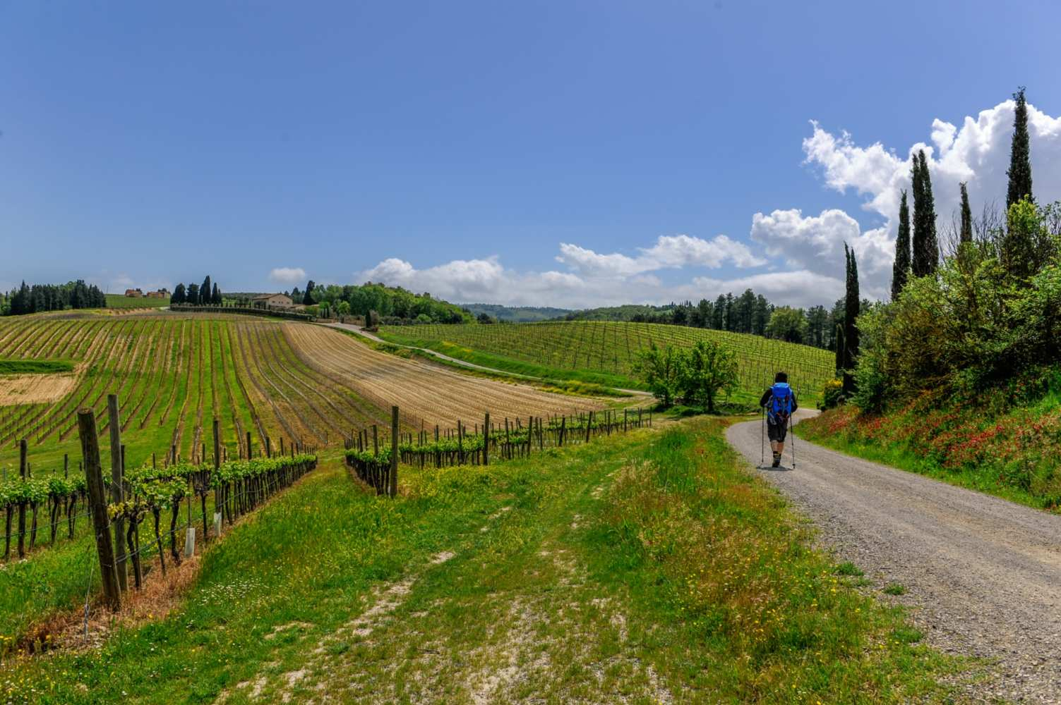Walking along the Via Francigena in Tuscany
