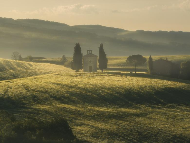 Vitaleta chapel, San Quirico d'Orcia – After a beautiful sunrise, the Tuscan hills are colored by gold