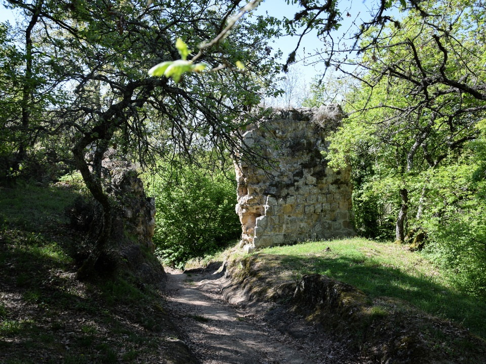 the remains of the walls of Vitozza